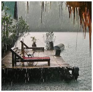 Погода в тайланде сезон дождей