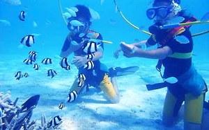 Морские развлечения